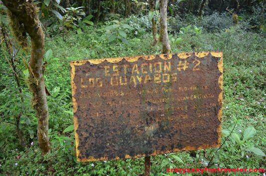 hiking Caracoral in El Valle de Anton with El Chakal (13)