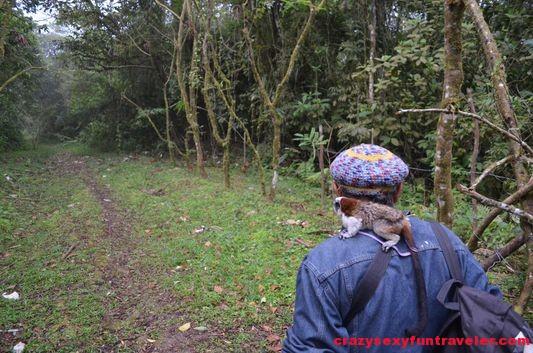 hiking Caracoral in El Valle de Anton with El Chakal (5)