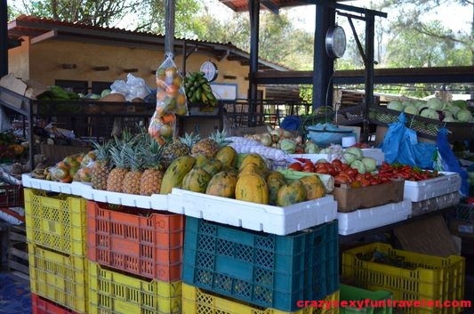 local farmers market El Valle de Anton