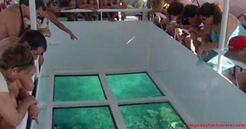 Fuerteventura-glass-bottom-boat