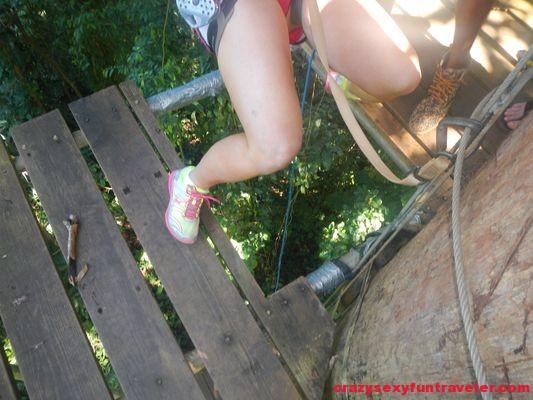 Red Frog Beach Bastimentos Sky Zipline Canopy Tour (10)
