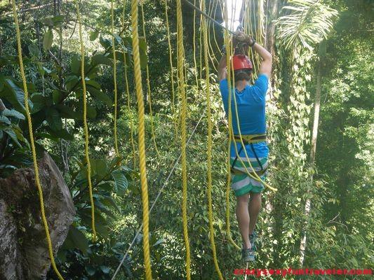 Red Frog Beach Bastimentos Sky Zipline Canopy Tour (11)