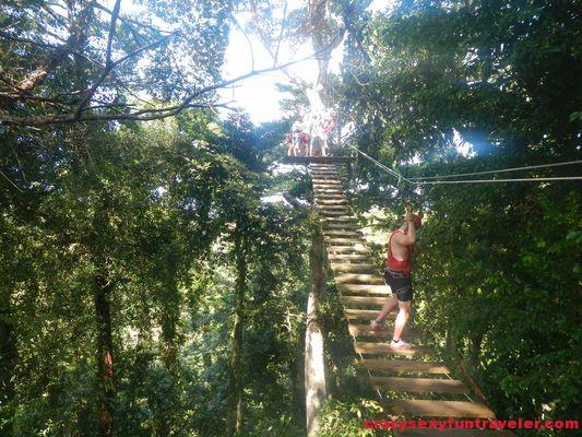 Red Frog Beach Bastimentos Sky Zipline Canopy Tour (13)