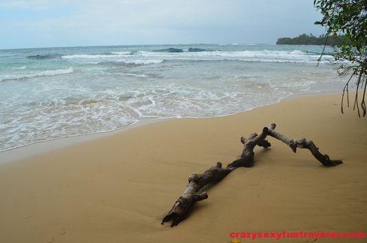 Turtle Beach Bastimentos (3)