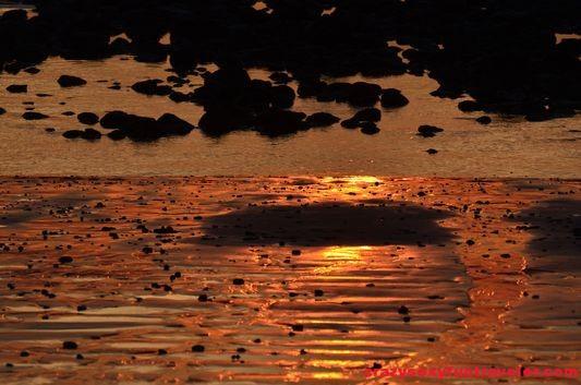 Puerto Jimenez Osa Peninsula Blue Osa sunrise (112)