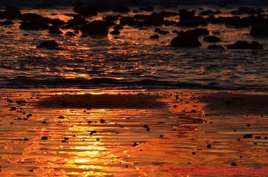 Puerto Jimenez Osa Peninsula Blue Osa sunrise (115)