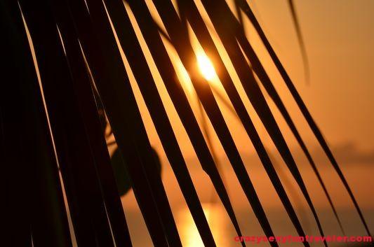 Puerto Jimenez Osa Peninsula Blue Osa sunrise (15)