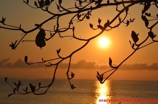Puerto Jimenez Osa Peninsula Blue Osa sunrise (16)