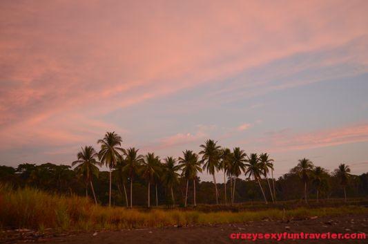 Puerto Jimenez Osa Peninsula Blue Osa sunrise (33)