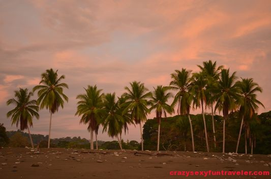Puerto Jimenez Osa Peninsula Blue Osa sunrise (36)