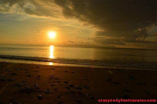 Puerto Jimenez Osa Peninsula Blue Osa sunrise (52)