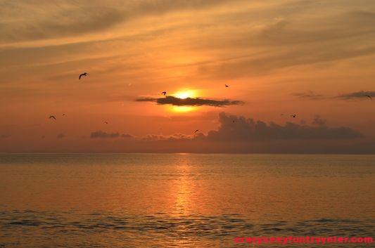 Puerto Jimenez Osa Peninsula Blue Osa sunrise (8)