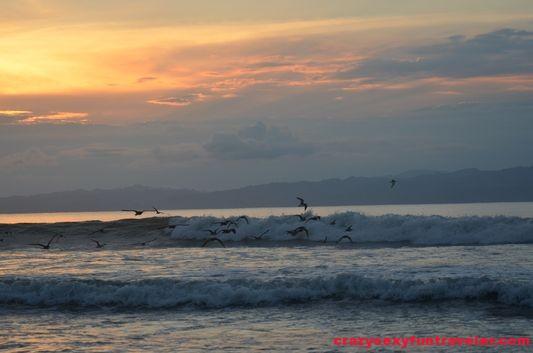 Puerto Jimenez Osa Peninsula Blue Osa sunrise (92)
