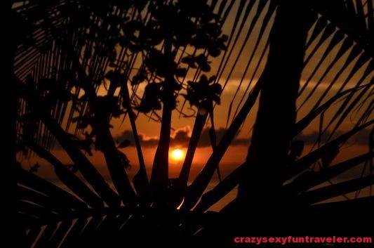 Puerto Jimenez Osa Peninsula Blue Osa sunrise (97)