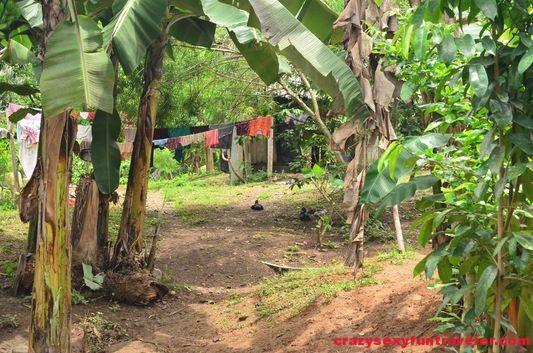 indigenous tribe Bribri in Talamanca (57)