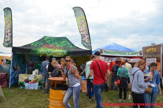 Acaimania Bazant Pohoda Festival 2014 (2)