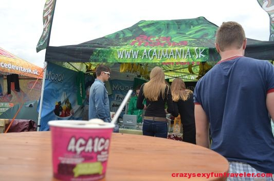 Acaimania Bazant Pohoda Festival 2014 (3)