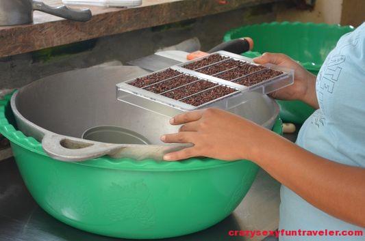 Caribeans chocolate Puerto Viejo (54)