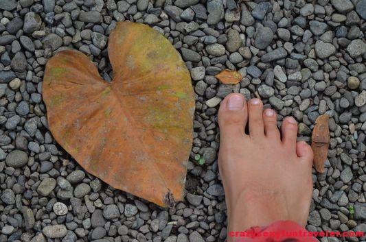Crazy Sexy Fun Traveler walking barefoot