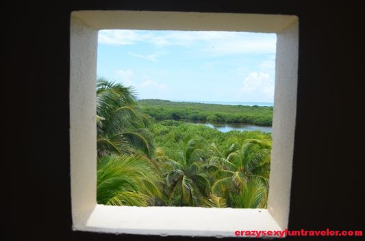 Contoy Island in Mexico (11)