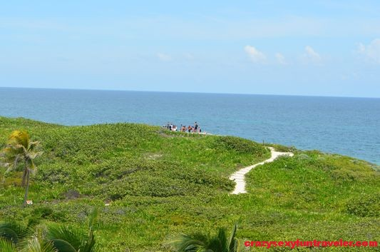 Contoy Island in Mexico (12)