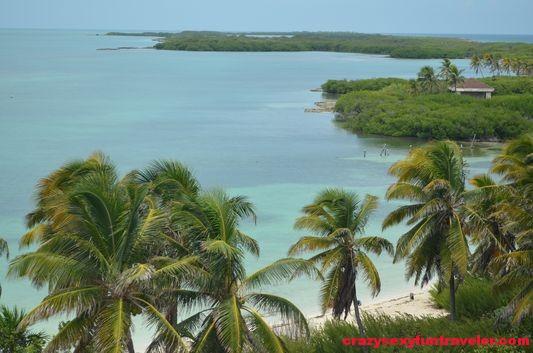 Contoy Island in Mexico (14)