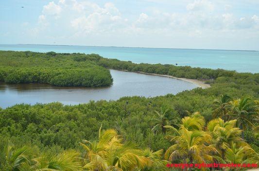 Contoy Island in Mexico (15)