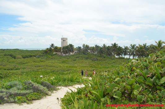 Contoy Island in Mexico (44)