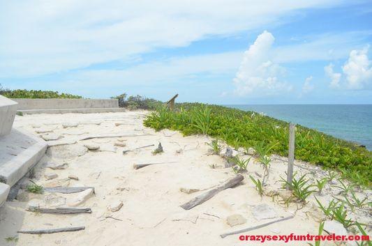 Contoy Island in Mexico (45)