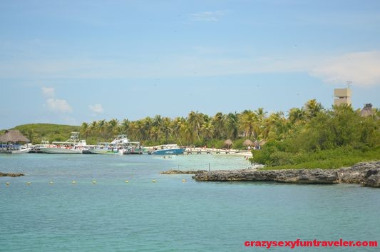 Contoy Island in Mexico (5)