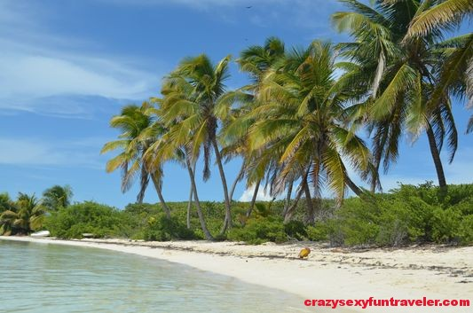 Contoy Island in Mexico (52)