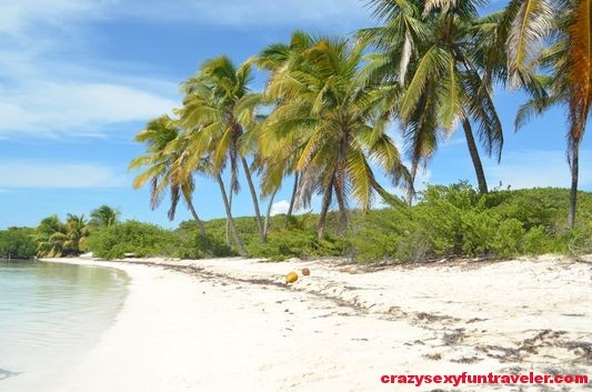 Contoy Island in Mexico (64)