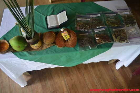 Caribbean medicine Hidden Garden workshops (1)
