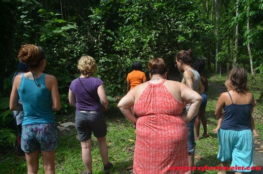 Caribbean medicine Hidden Garden workshops (7)