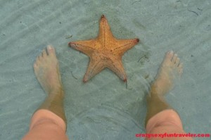 Starfish beach Bocas del Toro (11)