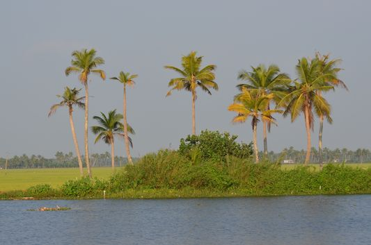 Kerala Backwaters houseboat from Kollam to Alleppey Lake & Lagoons (123)
