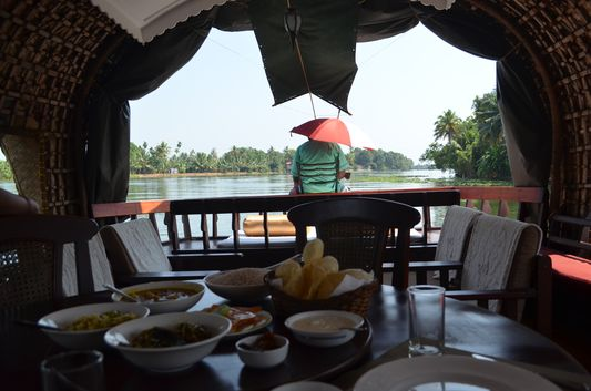 Kerala Backwaters houseboat from Kollam to Alleppey Lake & Lagoons (25)