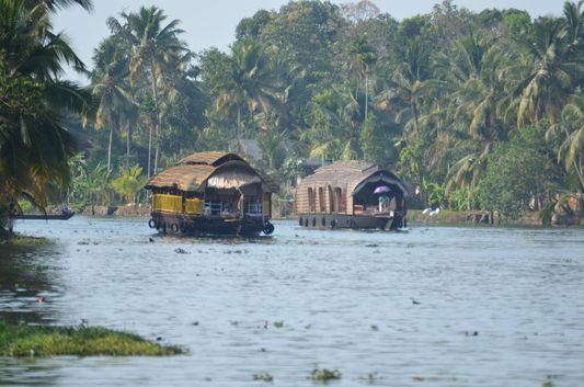 Kerala Backwaters houseboat from Kollam to Alleppey Lake & Lagoons (87)