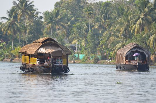 Kerala Backwaters houseboat from Kollam to Alleppey Lake & Lagoons (89)
