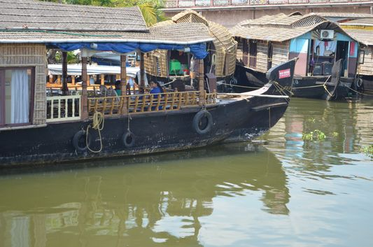 Kerala Backwaters houseboat from Kollam to Alleppey Lake & Lagoons (9)