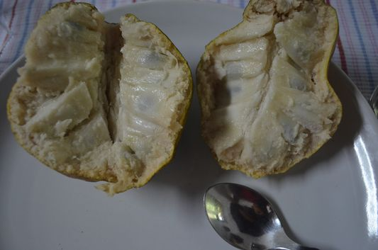 custard apple inside Wayanad homestay Pranavam Kerala India (36)