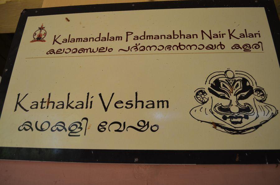 Kerala Kalamandalam dance school India (15)