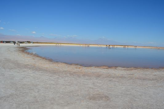 Cejar and Piedra Lagoon, Atacama, Chile