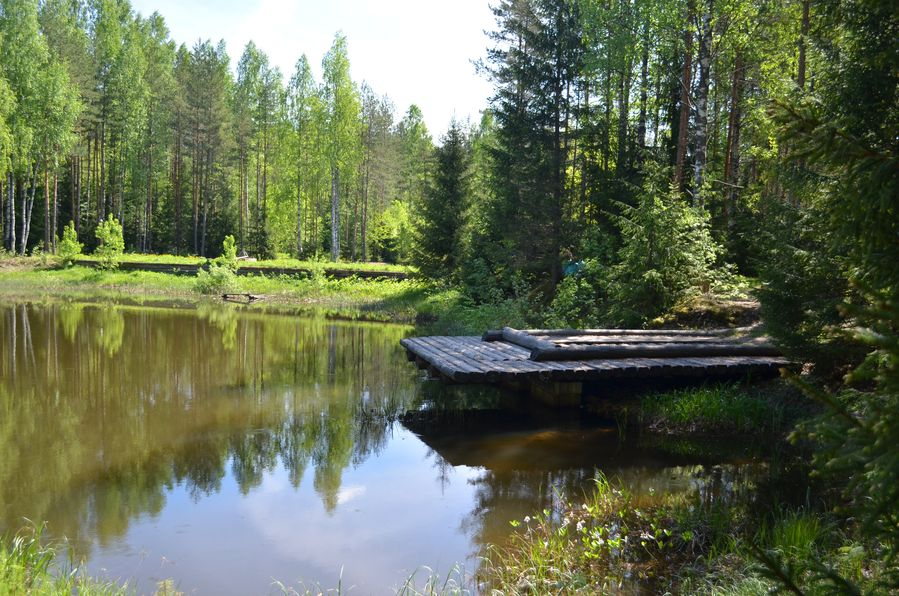 Mandrogi in Russia (36)