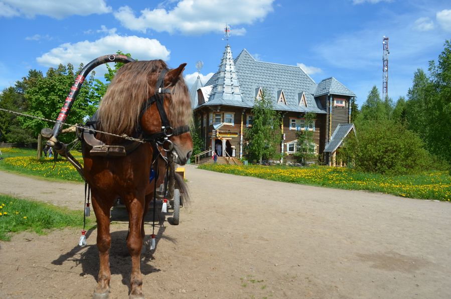 Mandrogi in Russia (53)