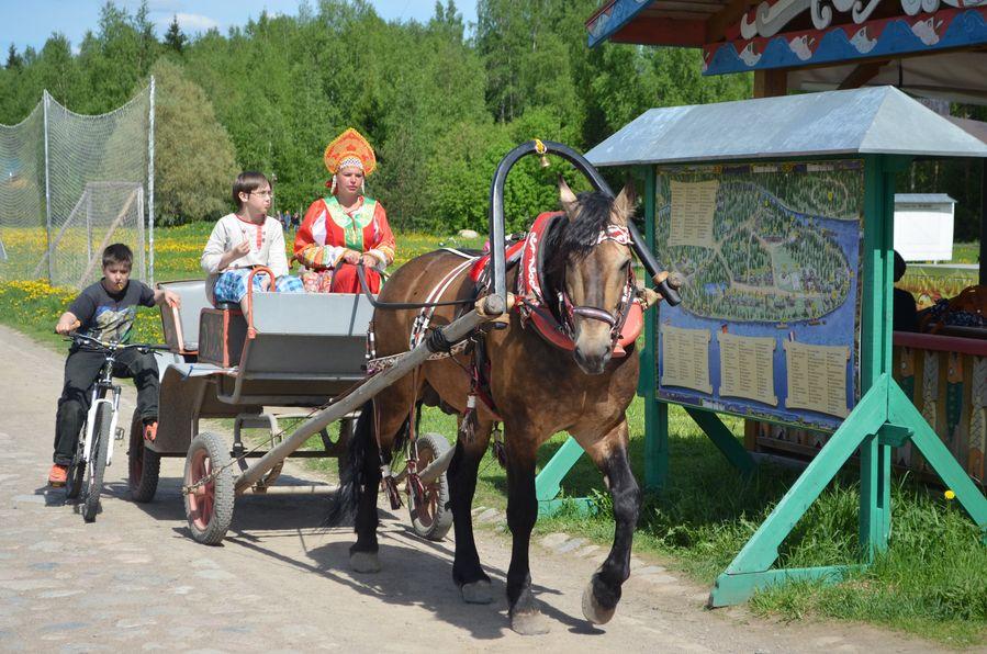 Mandrogi in Russia (86)