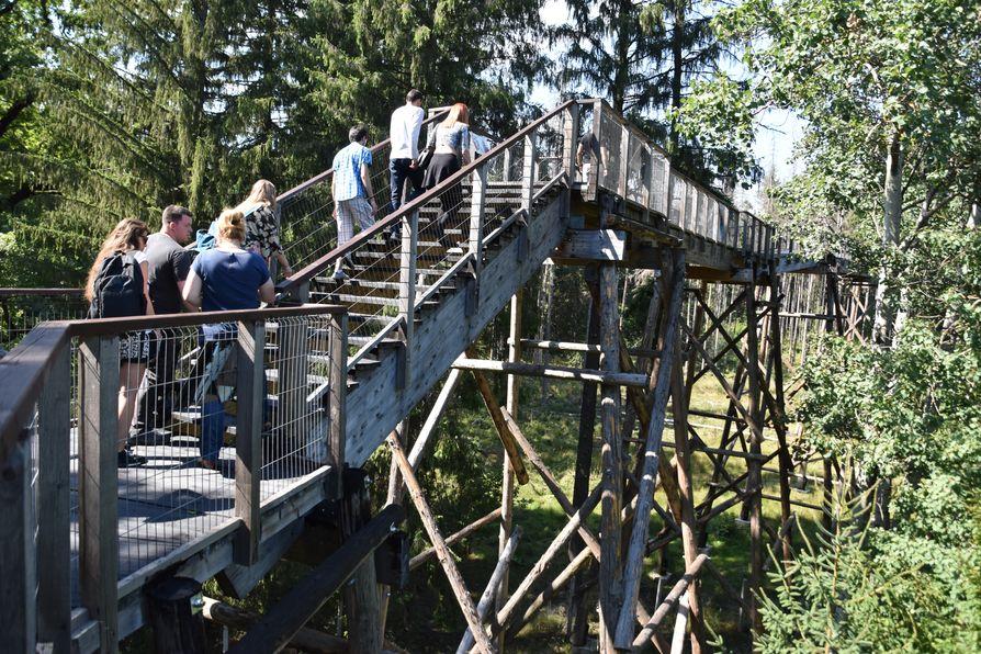 Dragos Voda Bison Reserve Neamt Romania (4)