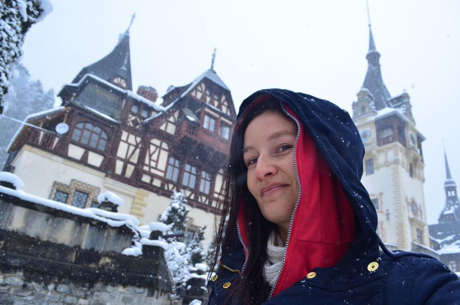 Peles castle Romania (42)