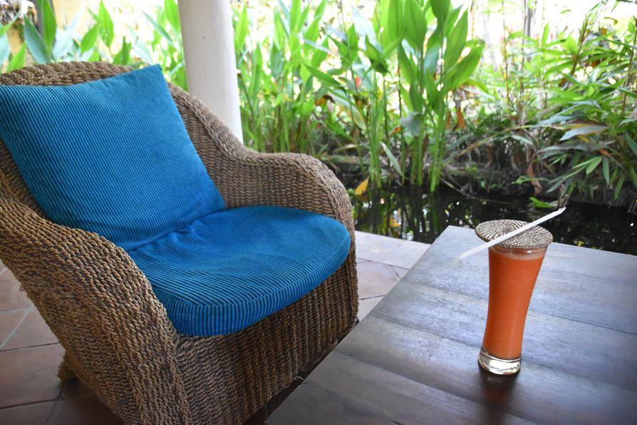Gajah Biru bungalows accommodation close to Ubud Bali (16)