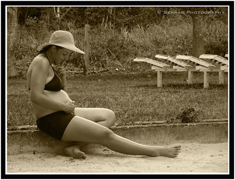 travel pregnant